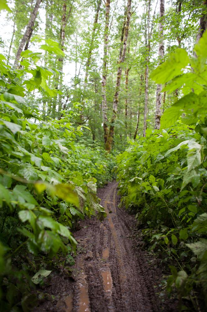 Muddy MUDDY trails?   CHECK!